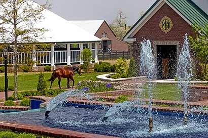 horse-breeding-stonewall-farm-lexington-kentucky-usa