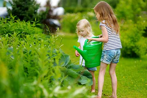 Stonewall Farm has many family gardening opportunities.